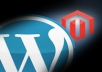 install WordPress and your theme plus essential plugins, provide WordPress tutorial, and optionally install Magento e-commerce software