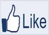 250 facebook likes to your fanpage