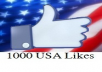 give 1000+ Real likes from USA Users to your Facebook Page without admin access