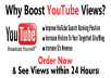 provide 2000 Youtube views to your Youtube video to make your video go viral