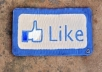 add you REAL 230+ facebook likes within 2 days