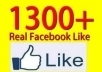 add 1300+ facebook fans to your fan page in less than 24 hours