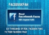 get you 300+ Real Facebook likes