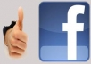 give 3100 facebook likes for your website or Facebook page without admin access which stay for ever