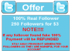 provide 100+ Twitter Followers, 100% Real and Active Human