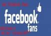 provide 500 Facebook Page Likes in less than 24 hours ( Special Offer )