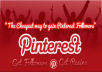 give you 1000+ Pinterest Followers / Likes or Repins without admin access