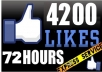 give You 4200+ Facebook Fans USA Likes With Profile Pictures And Fully Profiled Accounts Which Look Like Real Accounts Only