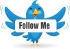 Get You 1000+ High Quality Follower your Twitter Account