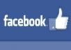 add 1700+ real and genuine facebook likes for your facebook page in just 48 hours