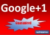 give you hundred percent 500 google +1 in your any site only