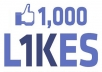 get you 1000 REAL Facebook likes/fans to your fan page