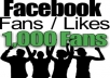 Get you 2500+ High Quality Real Facebook Likes