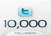 add 10000+ Real Looking Twitter Followers, no egg to your account in a day