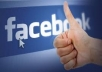 provide You, Real Human Verified 700+ High Quality Facebook Likes for your any Fanpage