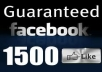 provide,1500+ 100% REAL HUMAN WORLD WIDE Very HIGH QUALITY FACEBOOK FANS LIKES for your any fanpage within 8 days only