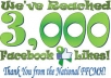 provide 1700+ 100% REAL HUMAN HIGH QUALITY FACEBOOK FANS LIKES for your any fanpage within 9 days only