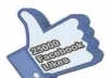 provide 2500+ 100% REAL HUMAN HIGH QUALITY FACEBOOK FANS LIKES for your any fanpage within 13 days only