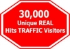 sent 30000 unique visitors to your website