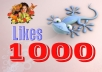 add 1000 Usa Facebook likes to your fanpage with US account 