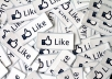 give guaranteed 200+ REAL facebook likes to your fanpage