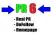 create a PERMANENT PR 6 DoFollow Backlink on my PR 6 site for you