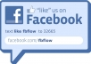 Provide Real 1000 Facebook Likes from Geo Target Area