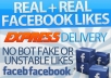 1800+ facebook PAGE likes from european countries in 20minutes, all real and active fb fans, pagelikes, fbfans, facebook pages, fanpages