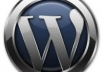 solve for you a wordpress blogs css,html and other wordpress issues