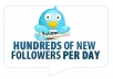 increase 100 Twitter Followers on your twitter account