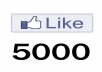 provide you 5000 +++ facebook fanpage likes only for your fanpage not for website