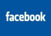 give you 200+ GuaranTeed facebook likes BONUS 10 shareS