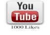 give you1000+ real human youtube likes for your any you tube video chanel