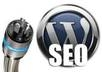install Wordpres manually with your Theme and help Optimezed your SEO with Necessary Plugins