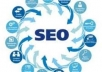 Boosts your website with 115000 backlinks to improve your Google rankings