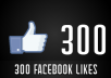 add 300+ real FACEBOOK Likes to your facebook fan page or post (Photo,video or status)  within 4 hour