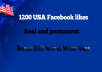 give you 1200+ real USA Facebook Likes