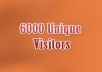 deliver 6000+ REAL HUMAN Visitors (Majority from USA) to Any URL