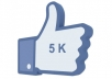 Give u 5,800 REAL Looking Facebook Fans on your FanPage
