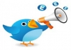 make a twitter shoutout about you to my 40.000 followers