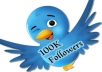 Give You ★Fast 100k ★Twitter Followers ★Within 24-hours