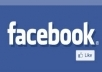 give you 500+ facebook like on your page