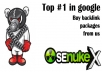 ★give you service of Senuke X,Mnf,SEO powersuite,Market Samurai,Article Submitter and Many More with Huge Bonus stuff
