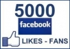 provide, 5000++ 100% REAL HUMAN WORLD WIDE Very HIGH QUALITY FACEBOOK FANS LIKES for your any fanpage within 25 days only