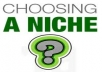 give you PLR Niche Pack of year 2013