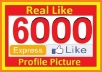 add 6000+ PERMANENT Facebook like (100% Real  HUMAN ) to Your Fanpage or Website  in just 48 hours