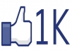 give u 40+40+40 real facebook fan/web likes (only Website)