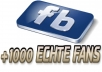 1000 Facebook Fanpage Likes