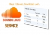 provide you 300 real and active sound cloud follower
