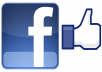 give You 350++ facebook likes